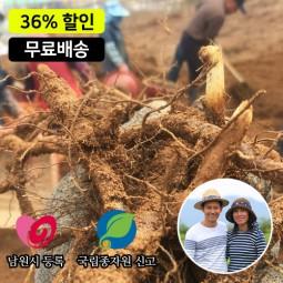 [무료배송]한잎새 먹 고사리종근 80kg