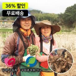 [무료배송]한잎새 먹 고사리종근 40kg